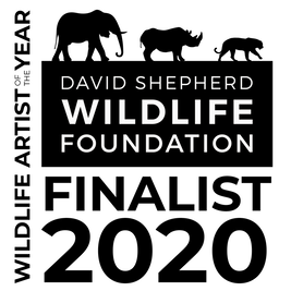 DSWF Artist of the Year 2020